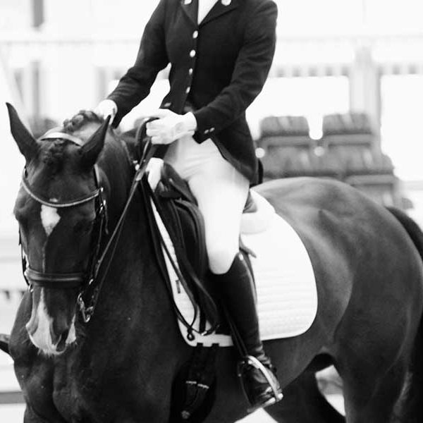 Dressage Photographers Liverpool