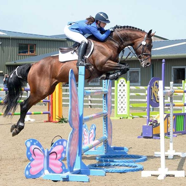 Show Jumping Photographers Cheshire